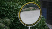 reflexo : Car pass by traffic mirror relying on the leafy green wall. Stock Footage