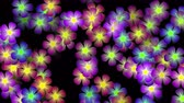 array : 4k Color flower petal, nature neon light pattern background