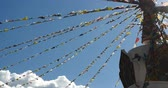 shangrila : buddhist white stupa  flying prayer flags with blue sky background,shangrila yunnan,china.