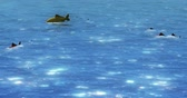 kova : cartoon fish swimming in shiny lake,water surface under sunlight,Waves Lingling. Stok Video