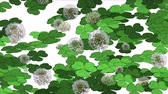 auspicioso : 4k Clover dandelion germination lawn grass vegetation plant background.