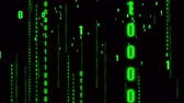 frontend : 4k The Matrix style binary code,The camera moves through the falling numbers.abstract future tech background.Green version.data digital display. Stock Footage