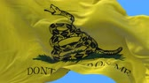 tridimensional : 4k A flag animation of the Gadsden flag sometimes called the Tea Party flag,Tea Party symbol.