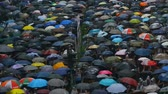 electing : Hongkong, China - August 2019: Demonstration of people with umbrellas on street of Asian city on summer day. Demonstrators at rally in business district of Hong Kong. Crowded residents chant slogans in defense of demands in rainy weather. Concept: meeting Stock Footage