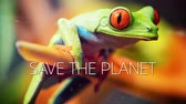 A slow motion video with a frog hanging on reed and save the planet caption.
