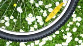 laborious : bicycle wheel on green meadow background turning ang making opposite rotation effect