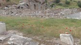 ephesus : Ancient ruins and temples at Ephesus as the ethnic heritage of our ancestors