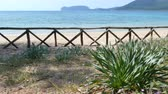 бирюзовый : View of Capo Caccia from the desert beach of Mugoni in a sunny day Стоковые видеозаписи