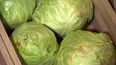 cut : Closeup of cabbage in the wooden box