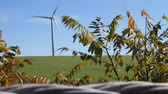 seletivo : Wind Turbines with Blur Foreground. 2 separate shots of fields with wind turbines generating energy.