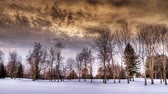 árnyék : Snow Scene HDR Time Lapse. 3 separate time-lapse shots of a snowy scene with trees and a ominous sky. the first 2 are treated with beautiful color tones and the final is a flat version for user color correction.
