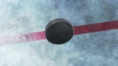 mrożonki : Hockey Puck Drop. animated puck drops from above and hits ice. 3 clips. 1st clip is puck drop on ice. 2nd clip is puck drop on black. 3rd clip is luma matte of puck to isolate it from the background.