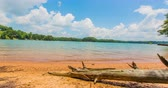 saturado : Beach Time Lapse with Fallen Tree in Foreground. a stripped tree trunk lying on a beach shore during a day time lapse. shot is at Lake Lanier in North Atlanta
