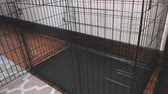 rohy : A Large Empty Pet Kennel in a Home. camera moves left on an empty large pet kennel in the corner of a house room
