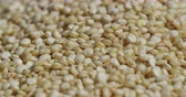 ingrediente : Quinoa Close Up Spin Uncooked. A filled macro view of uncooked raw quinoa rotates around