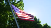 единение : American Flag Slow Sun Flare. an american flag waves in front of the sun flare with a tree in the background