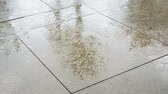 sandálias : Feet Walking in a Day Rain Shower. A hand held shot of wet cement walkway with legs of people walking by while it rains during the day in Las Vegas Stock Footage