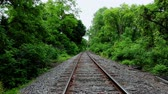 Train Tracks Empty Point of View with Trees. moving down the middle of empty train tracks with trees and forrest on both sides