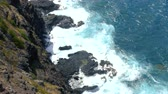 Above View of Ocean Crashing Against Rocks. an aerial view above an ocean shoreline with waves crashing against rocks Stok Video
