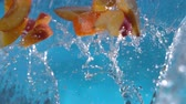 su damlası : Peach Nectarine Splashing into Water Slow Motion Shot at 1500 fps Stok Video
