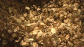 Oats Falling in the Air in Slow Motion a Top Shot at 1500 fps