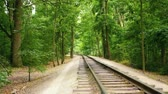 детский : Full HD video background. Childrens railway in the citys central park. Rails horizontal panorama.