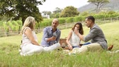 red : Group of mature friends enjoying a picnic sitting at park. Senior couples having lunch together and drinking red wine. Smiling women and happy men talking to each other in a happy conversation outdoor.