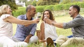 red : Mature friends raising their glasses in a toast during picnic. Happy middle aged couples celebrate. Happy man and smiling woman toasting with wine glasses anf have fun together.