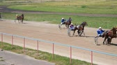 cartn corrugado : Leaders and ousiders of horserace