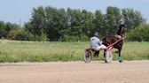 cartn corrugado : Horse with jockey in cart on race track