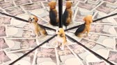 yen : Ten thousand yen bill and dog ornament reflecting in the mirror