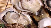 устрица : Fresh oysters close up Стоковые видеозаписи