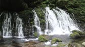 tohoku : Mototaki waterfall, Akita Prefecture in Japan Stock Footage