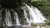 musgoso : Mototaki waterfall, Akita Prefecture in Japan Stock Footage