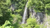 fleck : Komenokonotaki-Wasserfall in Japan Stock Footage