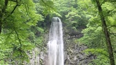 yamagata prefecture : Tamasudarenotaki waterfall in Japan