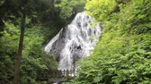 kreis : Fudonotaki-Wasserfall in Japan Stock Footage