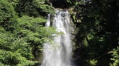 bystřina : Nasonotaki waterfall, Akita prefecture Japan