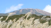 fiori blu : Mt. Chokai and Japanese pampas grass Filmati Stock