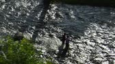 pescador : aerial shot of two fly fisherman Stock Footage