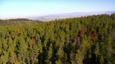 ladrão : aerial shot of forest and mountains and fields Stock Footage
