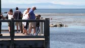 summer vacation : family stands on ocean pier