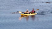 faaliyetler : Two fit kayakers paddle in unison  Stok Video