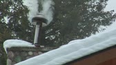 borovice : smoky chimney on snowy roof