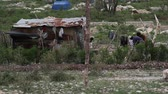 бедность : tin shack,  clothes line, and residents in Haiti
