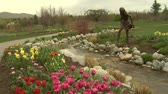 garden flowers : crane shot up to Tulips to park Stock Footage