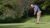 borovice : man putts on golf green