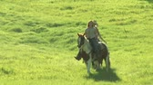 свобода : three young women on horses trot across green meadow