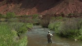 rybář : slow motion shot of fly fisherman and red rock cliffs