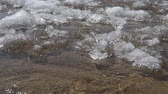 ледник : In the spring, ice melts on the river and is broken off in large pieces. Стоковые видеозаписи